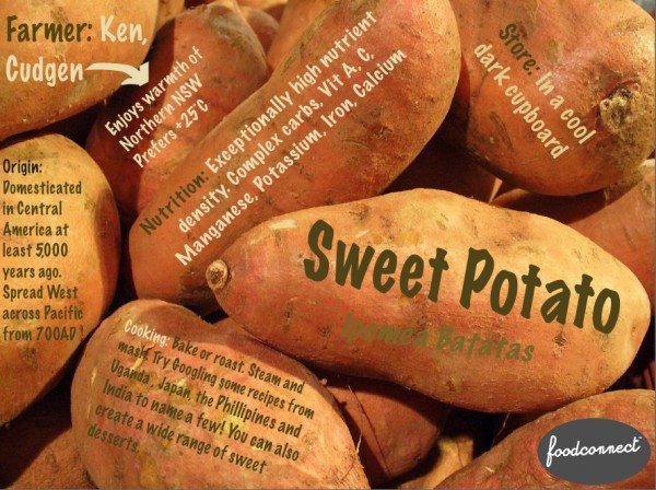 Sweet-Potato-web