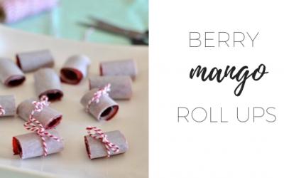 Berry mango roll ups