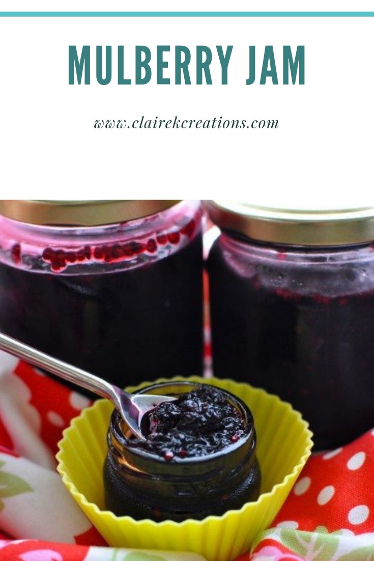 Mulberry jam easy quick recipe via www.clairekcreations.com