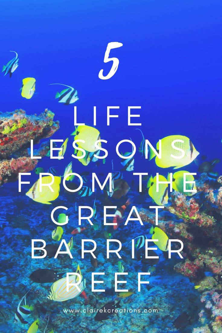 5 life lessons from the great barrier reef 2