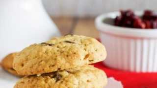 Choc nut and cranberry biscuits