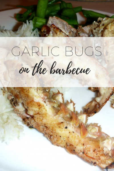 Garlic bugs on the barbecue via www.clairekcreations.com